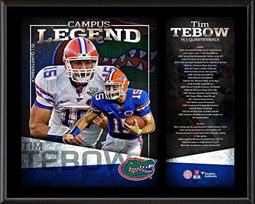 Tebow Florida Tim Gators - Tim Tebow Florida Gators 12