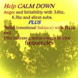 Help Calm Down Anger and Irritability (3.6hz, 6.3hz and Silent Subs, Plus 360hz Emotional Balance With 192hz and 15hz Release Trauma Energy Blocks Frequencies)