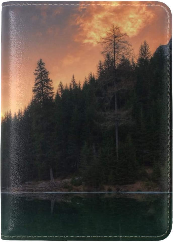 Lake Mountains Trees Leather Passport Holder Cover Case Travel One Pocket