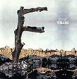 Metals [Vinyl LP]