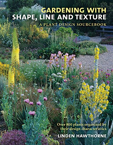 Cheap Garden Design gardening with shape line and texture a plant design