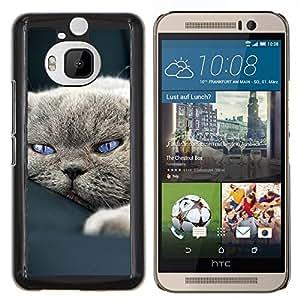 LECELL--Funda protectora / Cubierta / Piel For HTC One M9Plus M9+ M9 Plus -- Lindo gato --
