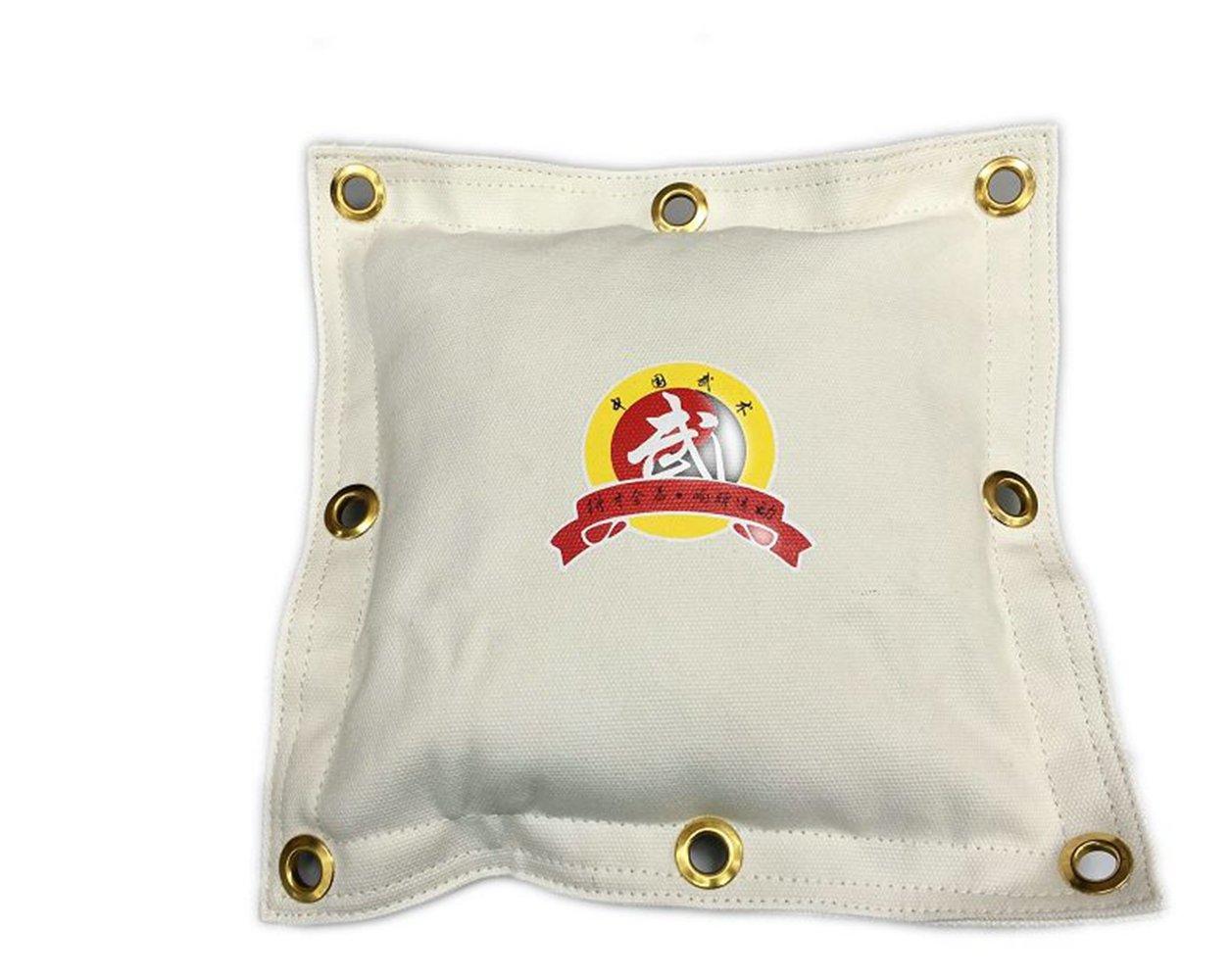 Hombre Wing Chun Kung Fu lienzo pared bolsas de arena bolsa de boxeo boxeo Striking JKD