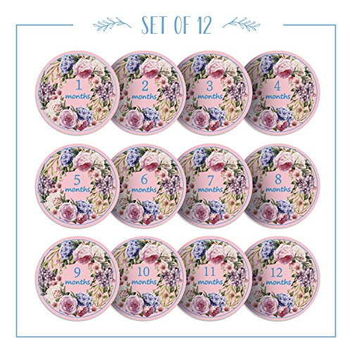 Newborn Baby Girl boy Monthly Milestone Pink Floral Pattern Onesie Belly Stickers Blue Numbered Months- Perfect Any Baby Occasion Great Scrapbook Photo Keepsake