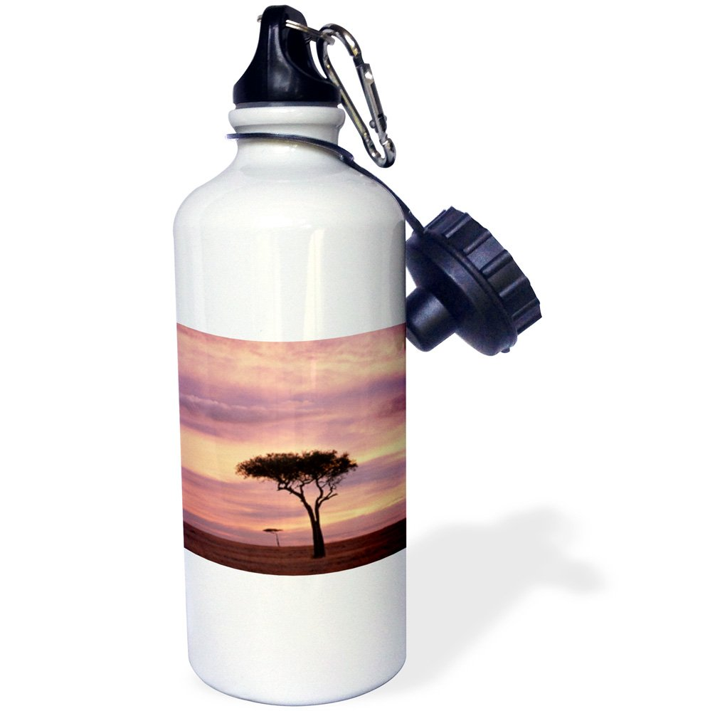 3dRose wb_209763_1 Kenya Sports Water Bottle 21oz Multicolored