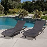 Eliana Outdoor Brown Wicker Chaise Lounge Chairs (Set of 2)