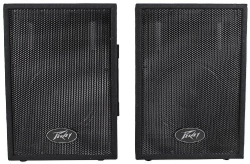 Peavey DJ 2-Way 100 Watt PA Speaker System with 10