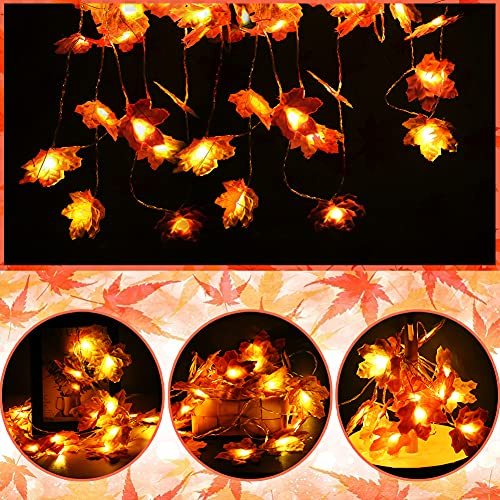 VGOODALL Ahornblätter Lichterketten, 3 Meter 20 LED Ahornblatt Herbst Lichterketten Girlande für Hochzeit Haus Herbst Weihnachtsfeiern Thanksgiving Außen Decorations