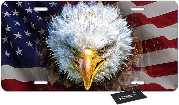"God Bless America Eagle Novelty Metal License Plate 6/"" x 12/"""