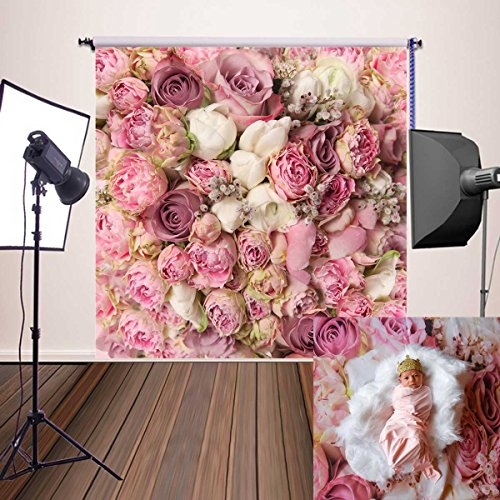 Price comparison product image Botong Rose Flowers Wall Background Vinyl Photography Backdrops Newborns Photo Prop for Studio BT114-5x5FT
