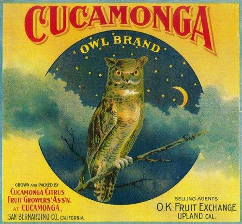 Lemon Fruit Crate Label - Cucamonga, San Bernardino County Owl Orange Citrus Fruit Crate Box Label Art Print