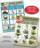 TOXIC PLANTS & FOODS Variety Pack Poison for Pets Dogs Cats Emergency I.C.E. Home Alone Refrigerator Fridge Magnet (Qty. 1)