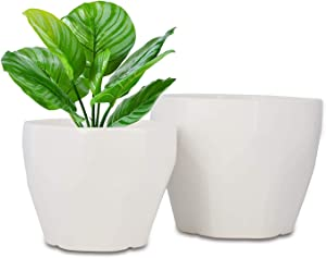 Seenccol Planter Pot Indoor 6.5 and 8 Inch Ceramic Modern Container Decorative Pots for Home and Garden with Drainage Hole and Tray for All House Plants,Succulent Set of 2 Matte White