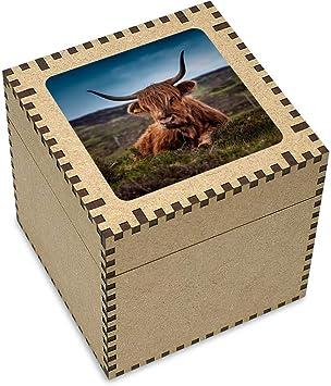 Stamp Press Grande Vaca de la Montaña Joyería Caja (JB00002758): Amazon.es: Juguetes y juegos