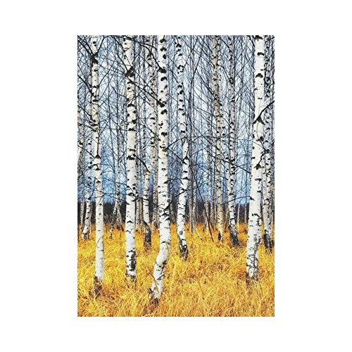 Pingshoes Autumn Birch Tree Grove Polyester Garden Flag Outdoor Banner 28 x 40 inch, Orange Grass Decorative Large House Flags for Party Yard Home Decor -