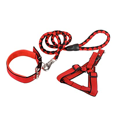 LY Pet Collar Leash Harness Set Adjustable Non Pull Ultra Long Lead 63 Heavy Duty Training Set 3 Pack High Visibility No Choking for Small Medium Large Dog Puppy