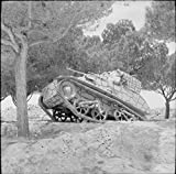 Home Comforts The British Army on Malta 1942 A Light Tank Mk VIC on exercise in the Maltese countryside, 24 March