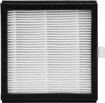 elimina 700 ml//d/ía purificador de aire port/átil y absorbente de humedad el/éctrico para casa dep/ósito de agua 1000 ml Purificador de aire HEPA y deshumidificador con filtro HEPA Afloia