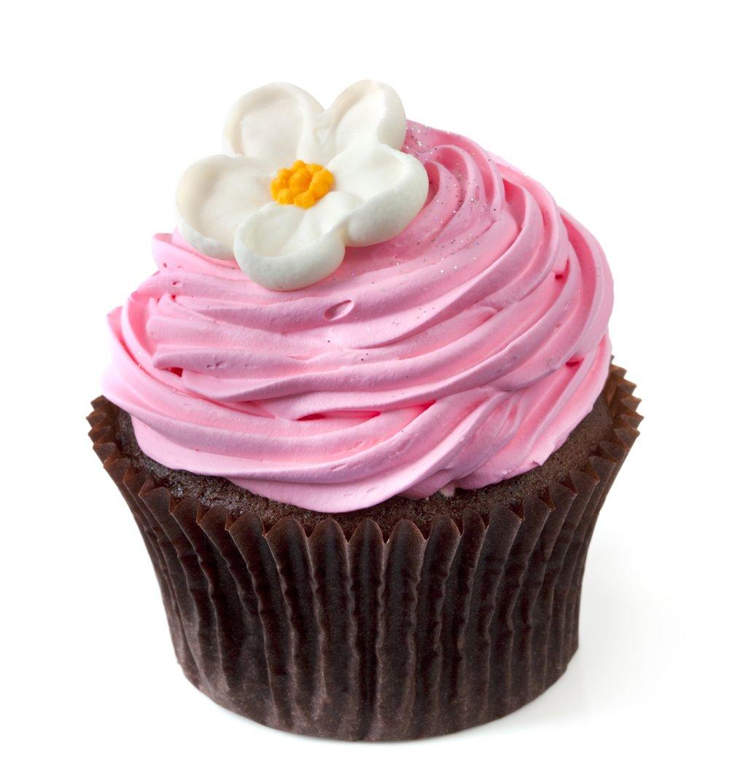 Pretty Cupcakes | 2048
