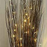 40 LED Fairy String Lights on 3.2m Clear Cable by Festive Lights (Warm White) Bild 3