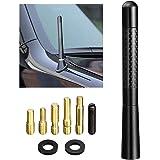Bingfu Vehicle Antenna Mast Carbon Fiber Car Antenna Replacement for Ford F Series F150 Raptor F250 F350 F450 Super Duty Esca