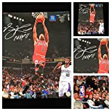 Derrick Rose Chicago Bulls Signed Autograph 16x20 Photo. D. Rose Authenticated