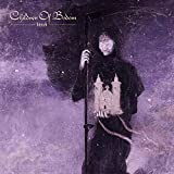 61tcAijTswL. SL160  - Children Of Bodom - Hexed (Album Review)