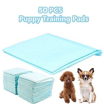 Homgrace 50 Unidades Empapadores de Entrenamiento para Perros Gatos Toallitas de Mascotas 60 x 45 CM: Amazon.es: Productos para mascotas