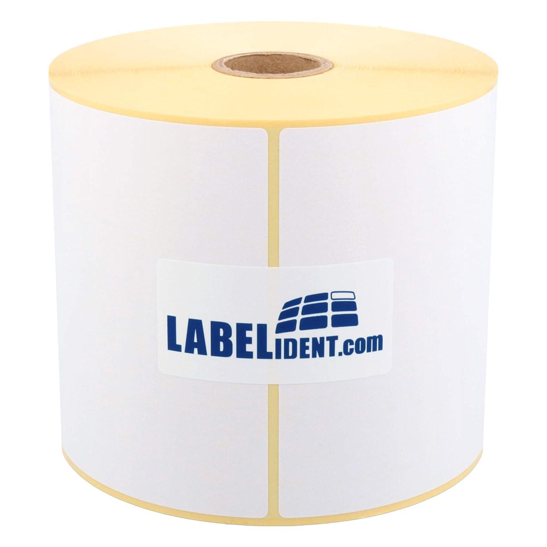 250 Stück Thermo Etiketten auf Rolle 103 x 199 mm DPD Versand Common Label