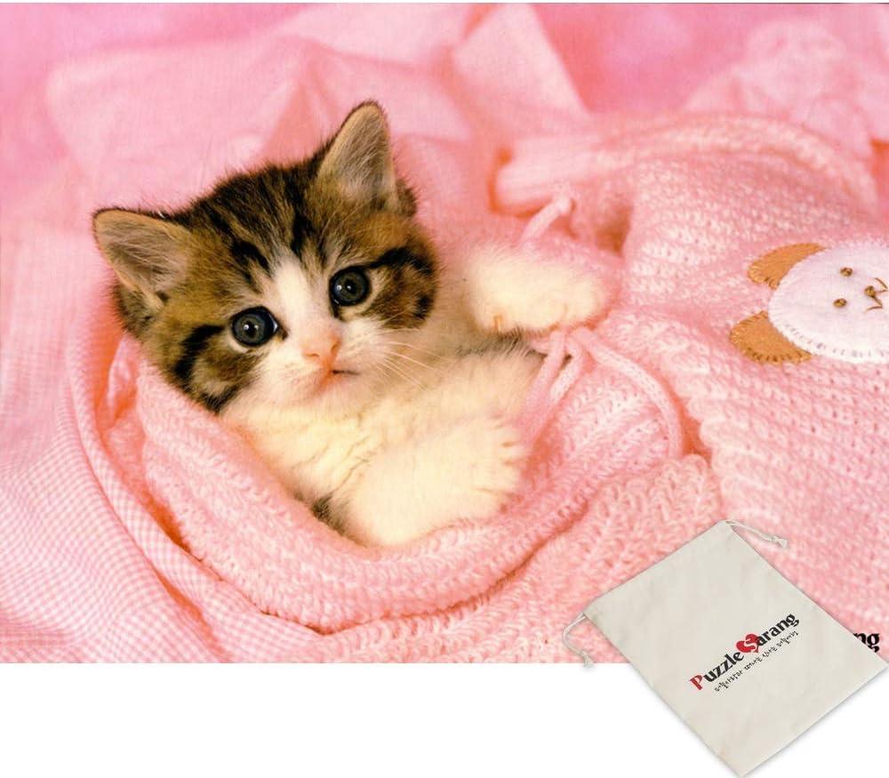 Pics kitty jane Kitty Jane