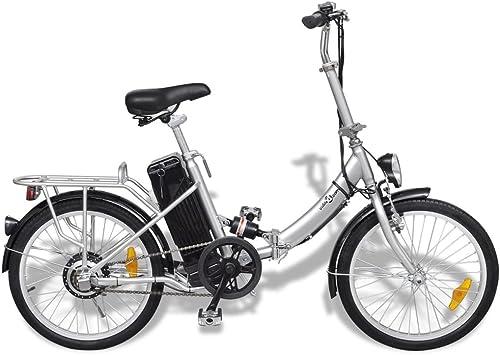Festnight Bicicleta Eléctrica Plegable con Batería Litio-Ion 24V ...