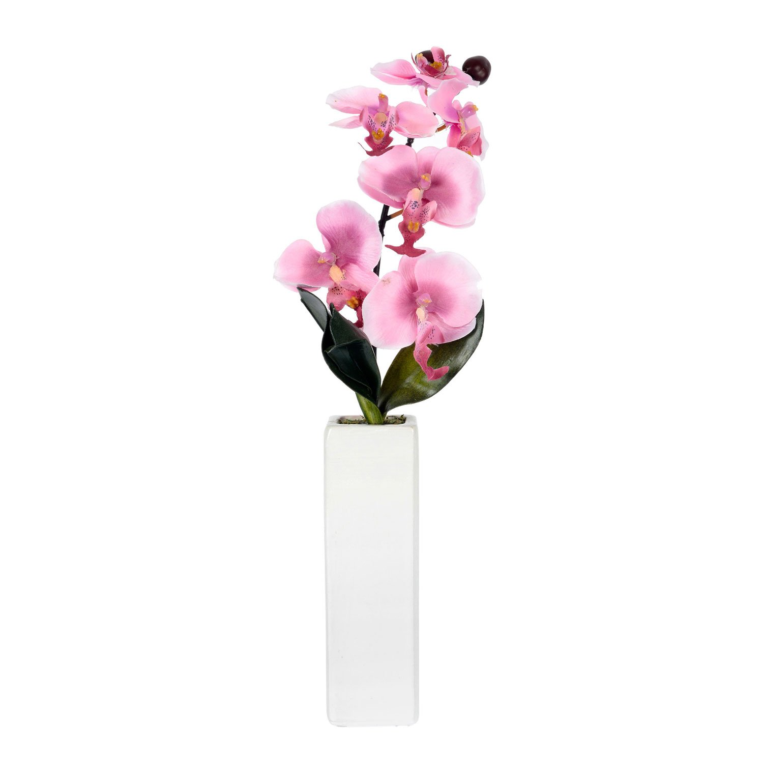 Homescapes Pink Orchid in Thin Cream Vase With Real Wood Stems, Lifelike Leaves and Silk Flowers Replica Artificial Plant