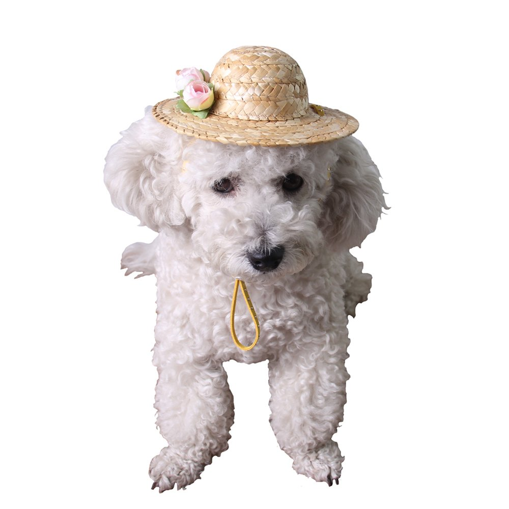 Ouzen Cute Handcrafted Woven Straw Pet Hat Cat Dog Toy Hat with Adjustable String (L)