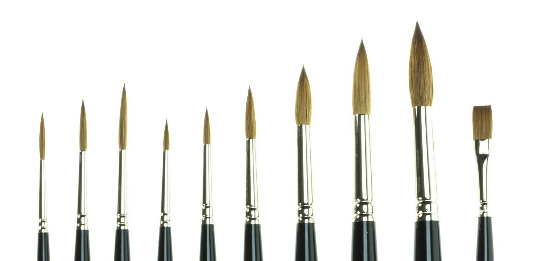 Set of 10 SAA Kolinsky Sable Brushes + Free Brush Case