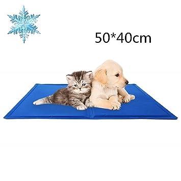 DAOXU - Colchón de Gel para Mascotas, para Mascotas, Perros, Gatos, para relajar el Calor, no tóxico (50 x 40 cm): Amazon.es: Productos para mascotas