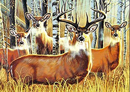 DEER UNFRAMED Holographic Wall Art-POSTERS That FLIP and CHANGE images-Lenticular Technology Artwork--MULTIPLE PICTURES IN ONE--HOLOGRAM Images Change--Technology by THOSE FLIPPING PICTURES by Those Flipping Pictures (Image #3)