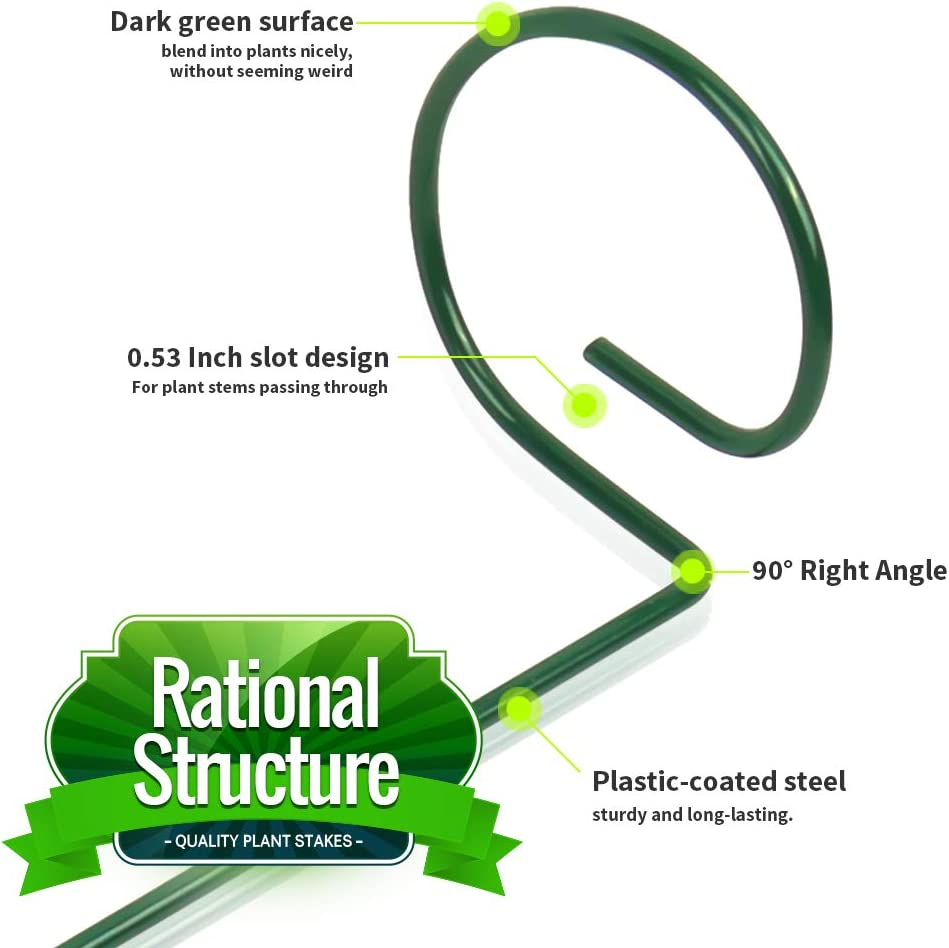 40 CM//15.9 Inch Single Stem Plant Support Metal Garden Support Stakes for Tomatoes Amaryllis Orchid Lily Rose Zinnias LEOBRO 12 Pack Plant Stake