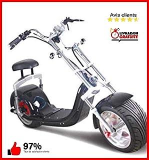Ciclomotor electrico URBET 1.500W 40aH CITYCOCO ...