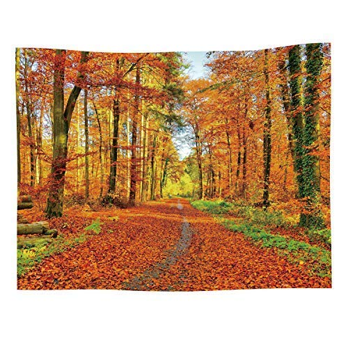 Autumn Landscape Tapestry Fall Nature Scenic Scenery Trees Woods Forest Plant Leaves Art Decor Wall Hanging for Bedroom Living Room Dorm