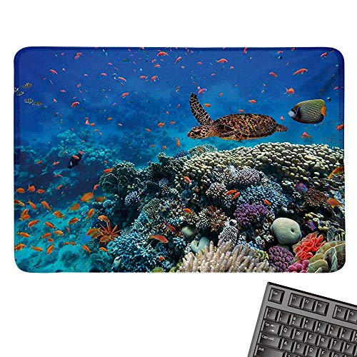 (Fishlarge Mouse padExotic Fish and Turtle in Fresh Water on Stony Corals Bio Diversity Wild Life PhotoComfortable Mousepad 15.7