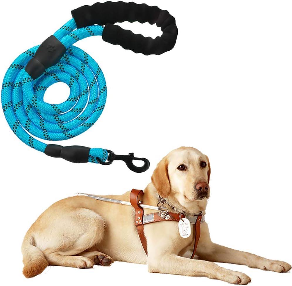 Litthing Correas para Perros Nylon con Mango Acolchado Ajustable Negro Sólido Reflectante 150 cm para Perros Grandes o Medianos Adecuado para Correr Senderismo Correr (Azul)