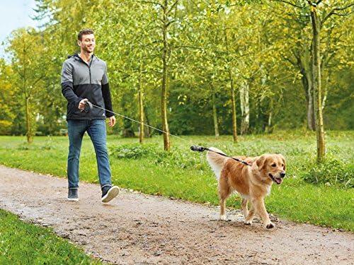 Zoofari Correa retráctil para perro con botón de parada y bloqueo ...