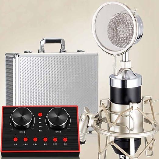 Hexiansheng Micrófono Recording, Equipo en Vivo, micrófono ...