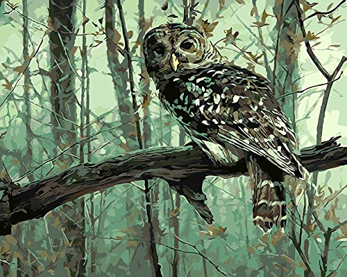 Komking DIY Painting by Numbers for Adults, Paint by Number Kits on Canvas with Brush, Vivid Owl on The Tree 16x20inch (Owl Canvas On)