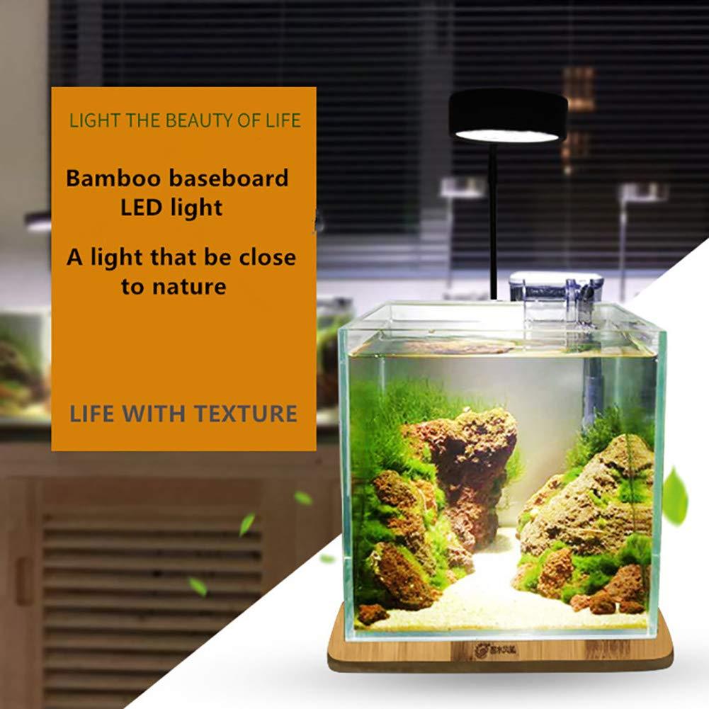DJLOOKK LED Lámpara De Acuario para Fish and Coral Reef Fish Tank 3W 5W 7W 9W Adecuado para Grande,Tanques De Peces Medianos Y Pequeños: Amazon.es: Deportes ...
