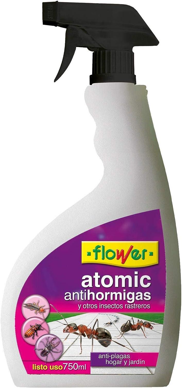 Flower 20514 20514-Anti-hormigas, No Aplica, 13x5x27.5 cm