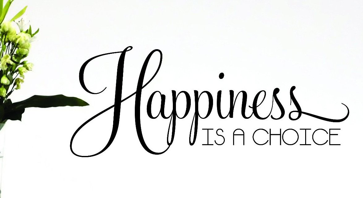Design with Vinyl RAD 614 2 Happiness is A Choice Quote Vinyl Wall Decal 12 x 30 Brown