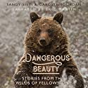 Dangerous Beauty: Stories from the Wilds of Yellowstone Audiobook by Carolyn Jourdan, Sandy Sisti Narrated by Eric Martin