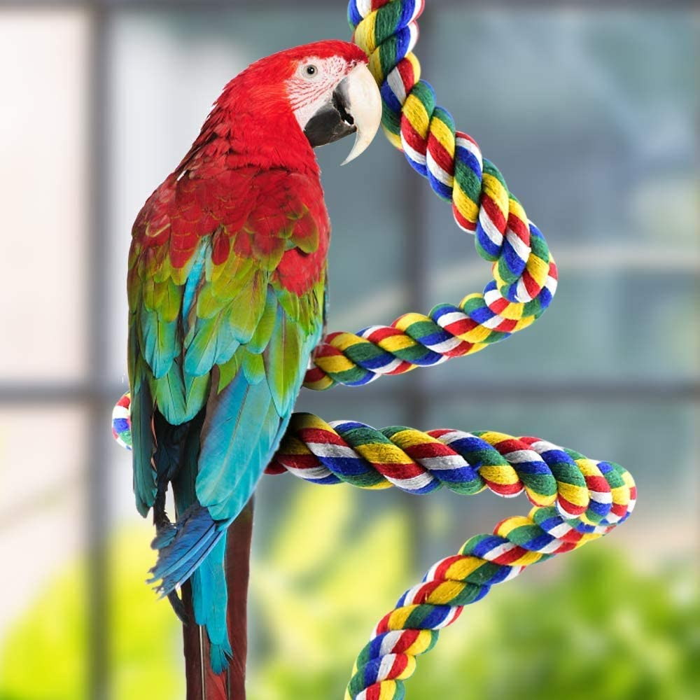 Katumo Bird Parrot Toys Bird Perches Stand Wood Playground Paw Grinding Rope Bungee Bird Exercise Parrot Cage Toys Climbing Ropes Swing Spiral Standing Toys For Pet Parrot Budgies Parakeet Lovebirds Amazon Co Uk Pet