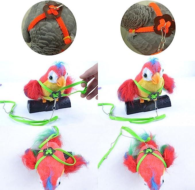 Arnés y correa ajustable Beauty Parrot antipicotazos para loro ...
